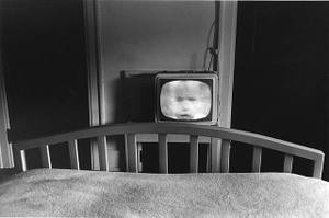 Friedlander_galax_virginia_1962